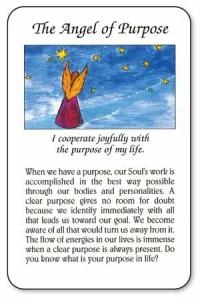 Angel Meditation Cards